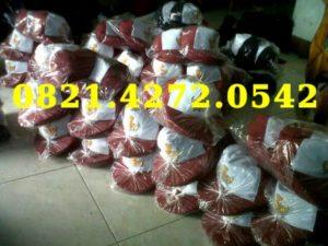 Grosir Topi SD siap kirim seluruh Indonesia